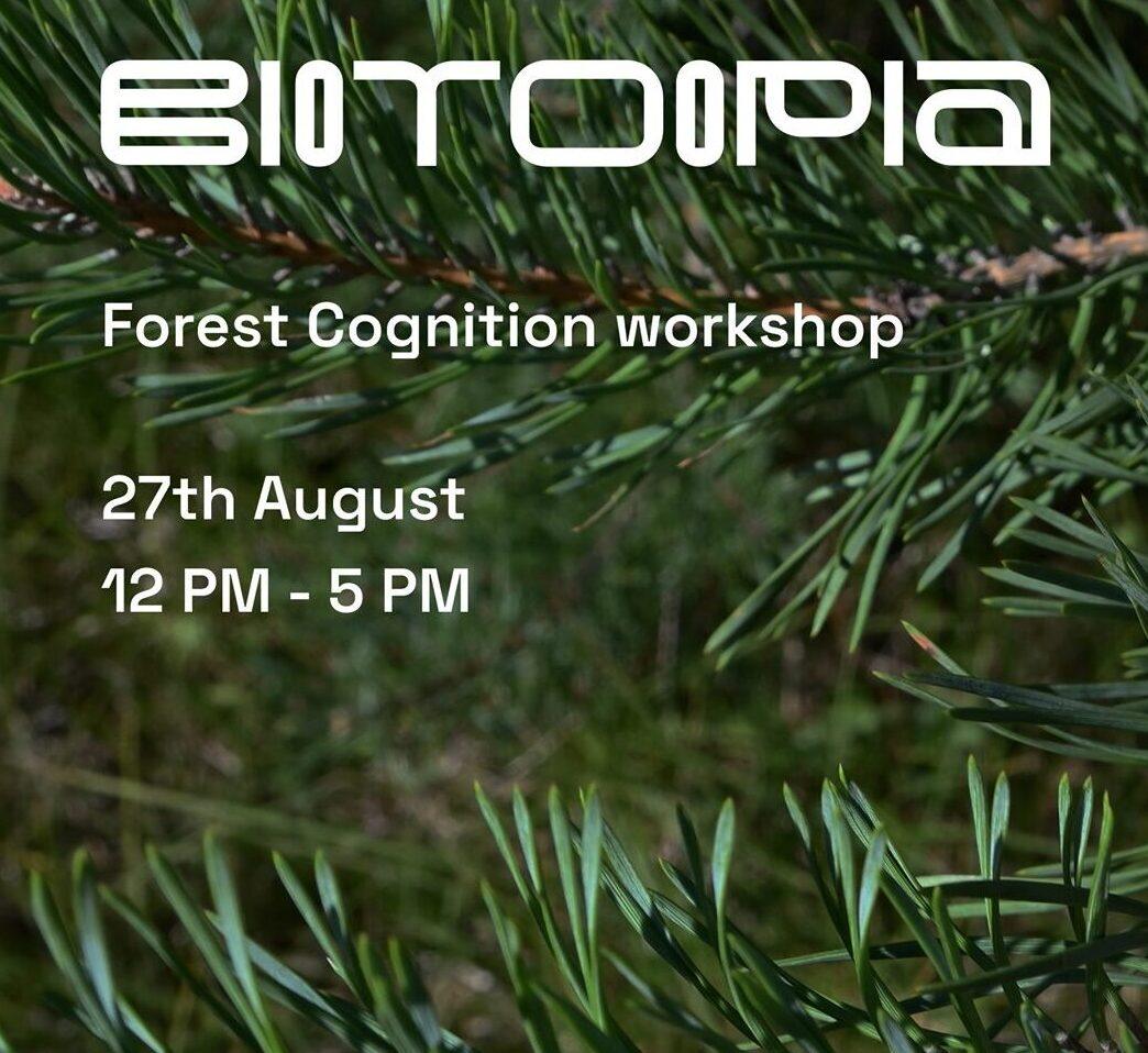 27.08 Forest Cognition workshop